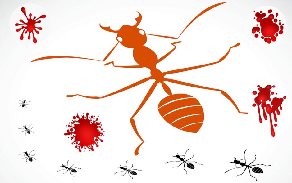 개미-무덤-주식-파생상품