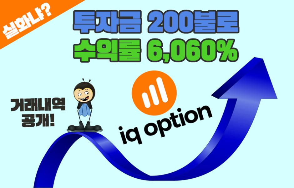 아이큐옵션-수익률공개-바이너리옵션