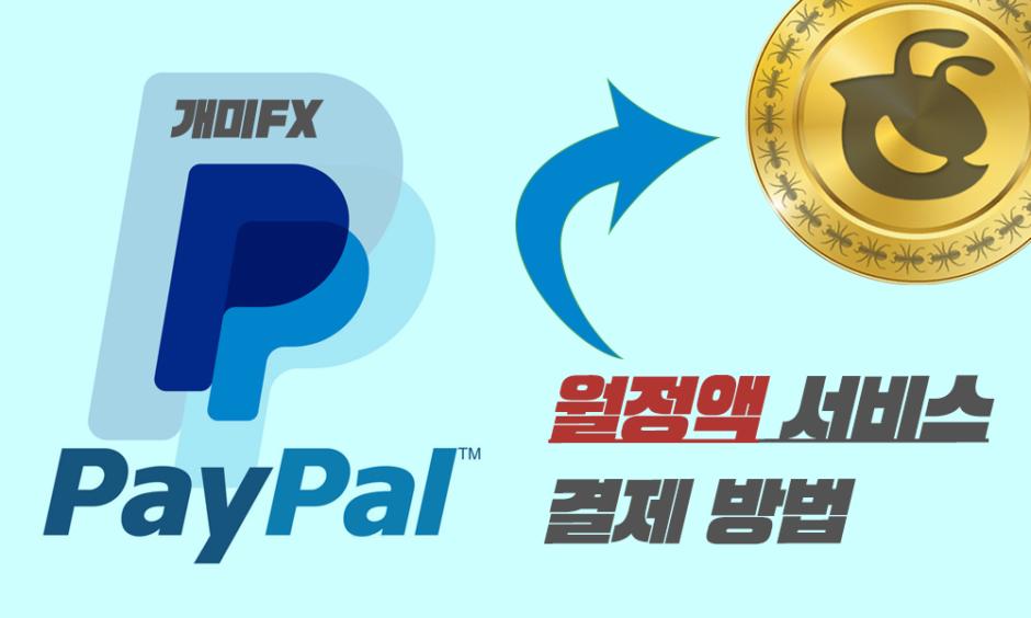 페이팔-정기결제-월정액서비스-신청방법