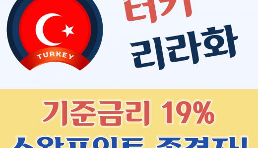 터키 리라화, 미국 달러 대비 15% 폭등! 비트코인 흉내?