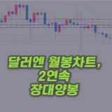 달러엔-장대양봉-월봉차트